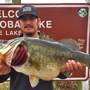 Mississippi Lake Record Largemouth Bass Caught – 14.3 Pounds!